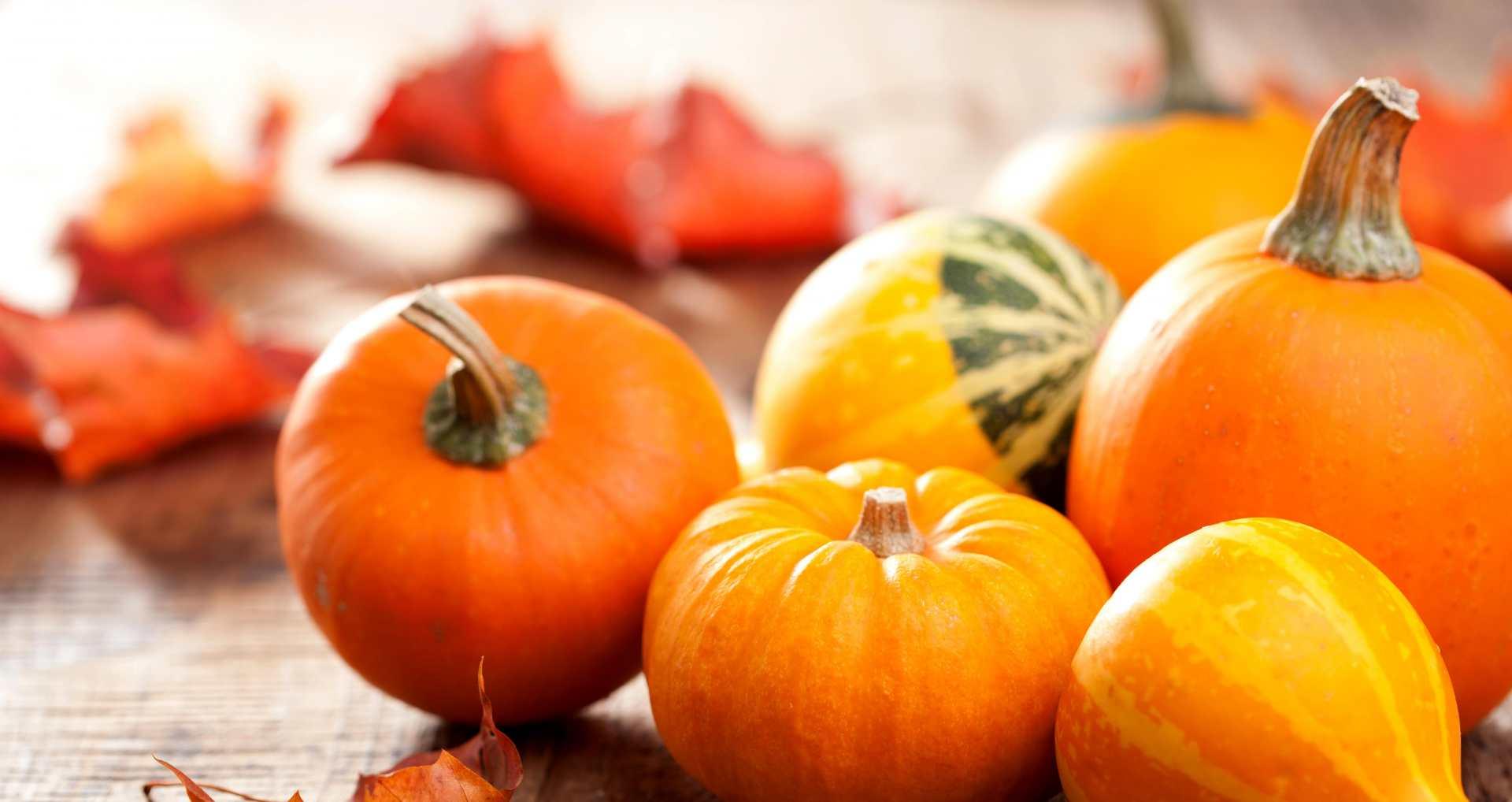 Le potiron : Créaline vous dit tout sur les bienfaits du potiron, un délicieux fruit d'automne